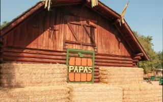 Photo of barn at papa's pumpkin patch